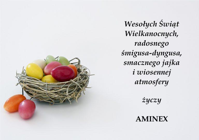 przezwajanie silnikow AMINEX WIELKANOC 2019