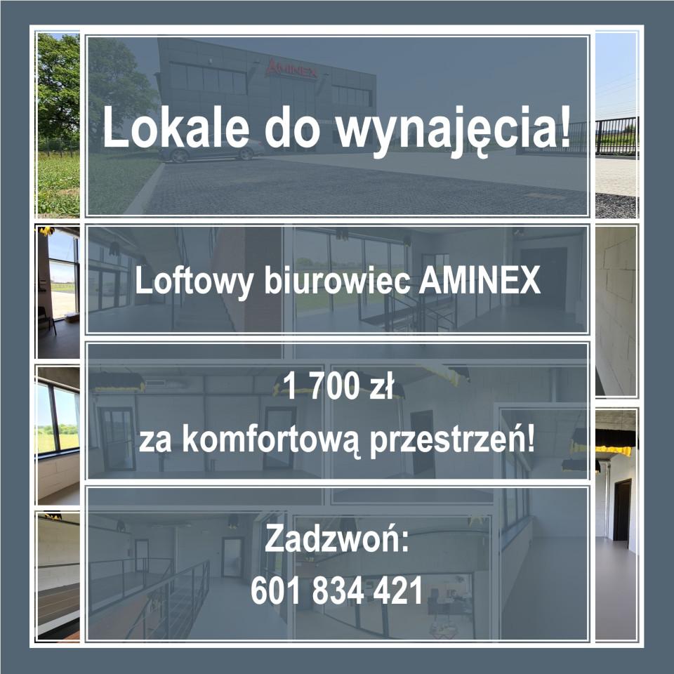 Aminex lokale biurowo-usługowe do wynajęcia ogłoszenie wynajem strona